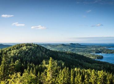 Недвижимость Восточная Финляндия